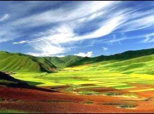 马新芳|人间仙境 桑科草原